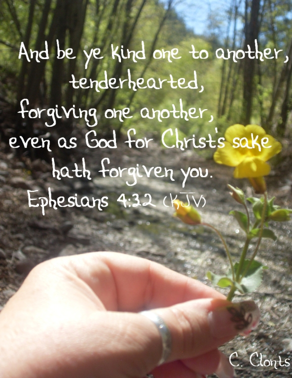 Photo & Chosen Scripture by Candy Clonts
